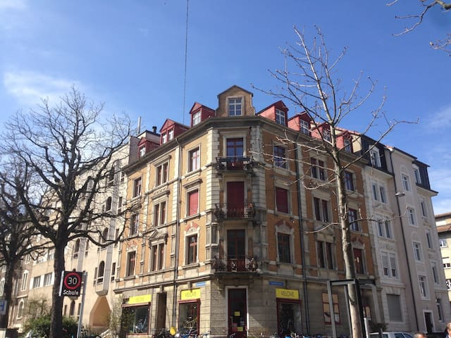 Spacious bedroom in cosy apartment - Basel - Apartmen