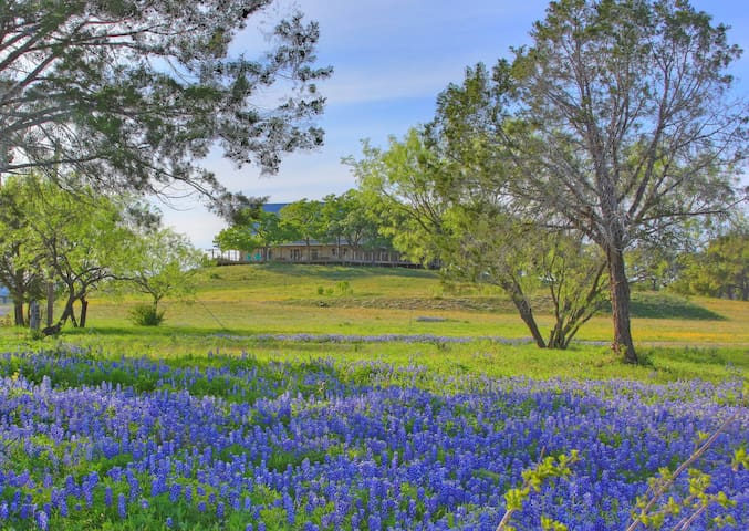 11BR/6BA Hill Country Gathering  (Sleeps 30) - Marble Falls - 一軒家