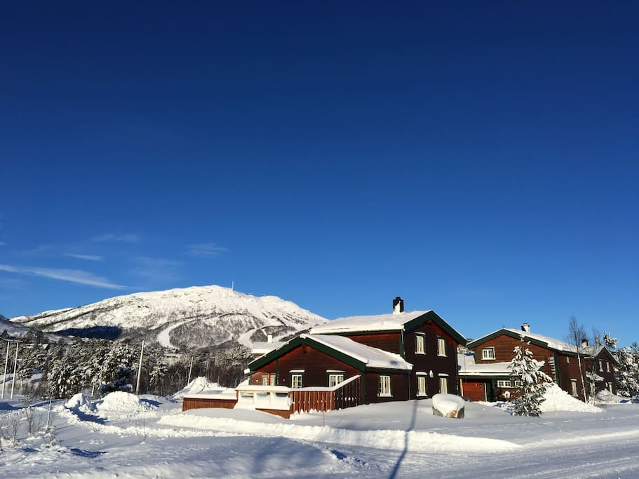 Sunny day 14. Of January 2017! Direct view to Alpin Slopes