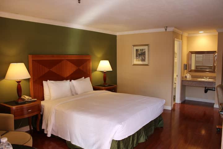 酒店大床房 B