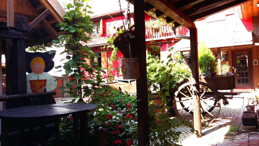 La cour pavée - Olwisheim - House