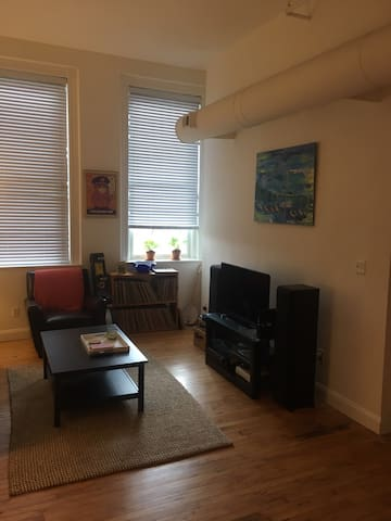 Renovated Fells Point Condo