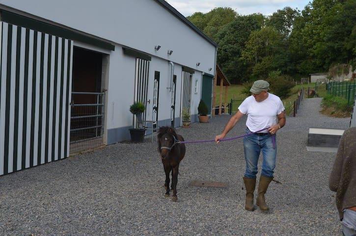 XHAWIRS HORSE FARM - Herve - Hus