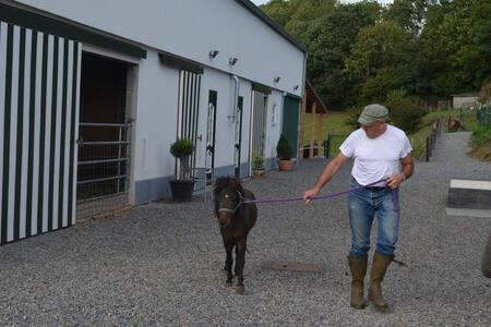 XHAWIRS HORSE FARM - Herve - Haus