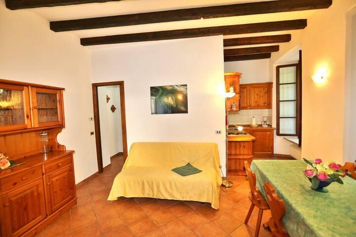 2-Zimmer-Wohnung im Zentrum von Cannobio - Cannobio - Appartement