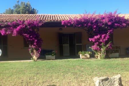 Casa in collina a 10 minuti dal mare - Aglientu