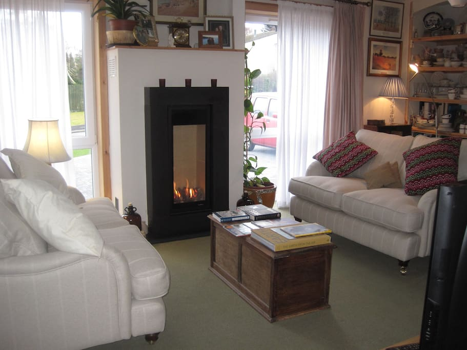 the cosy living room with living flame fire
