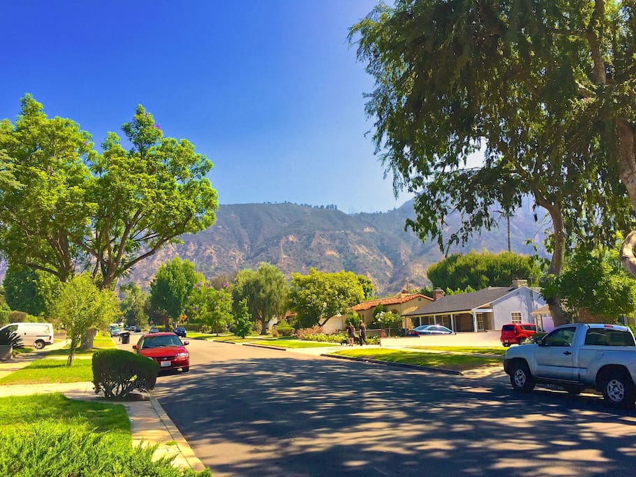 Surrounded by mountains and tree lined neighborhood