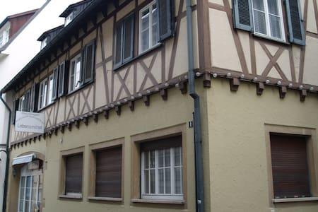 Micro-Apartment im Herzen von Reutlingen - Reutlingen - Apartamento