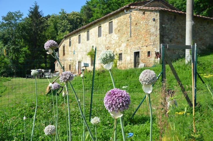 Tuscany dream rustic VIEWS - San Quirico - Casa