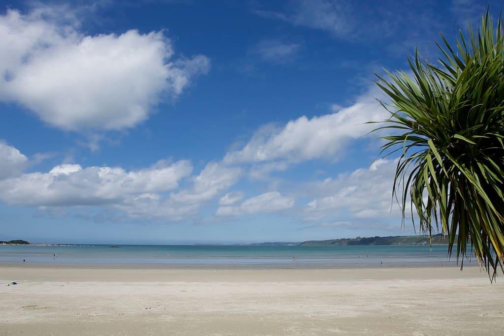 Vue depuis la maison... la plage à 5 mètres !