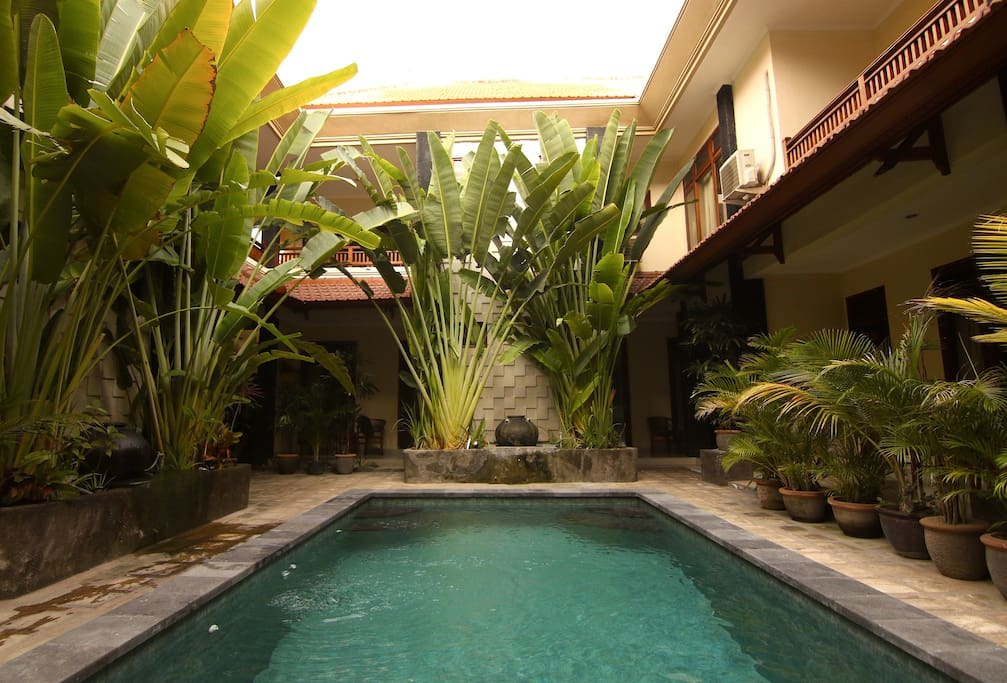Our Nice little Swimming pool that is perfect for cooling off in the Nice Bali Weather