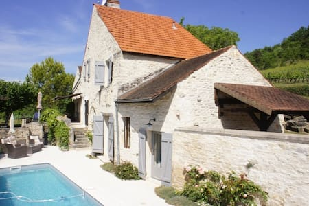 Burgundy Villa with pool Beaune vineyards view