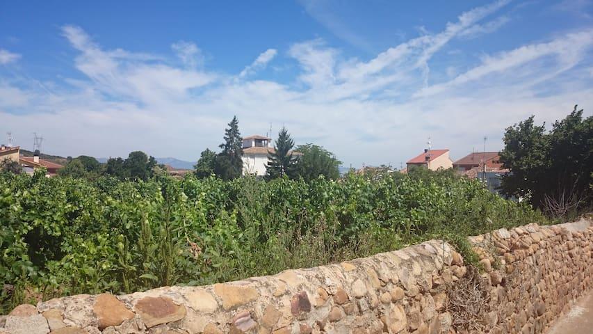 Piso nuevo montaña y bodegas Rioja