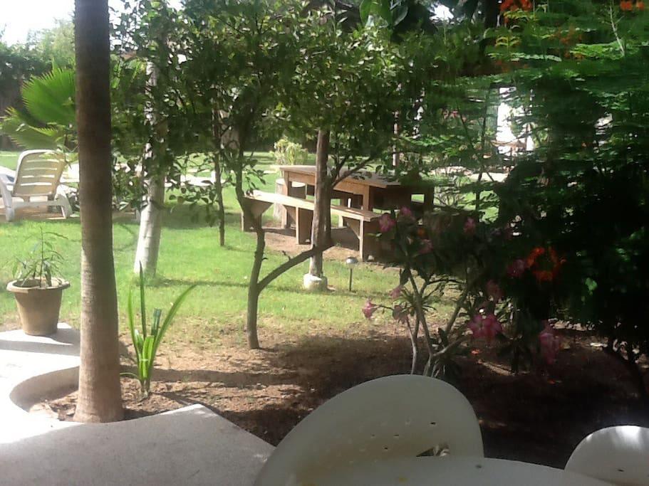Jardin d 39 afrique bungalow baobab bungalows louer for Baobab jardin