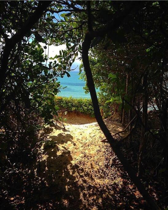 15 minutos de trilha até chegar a Praia das Minas