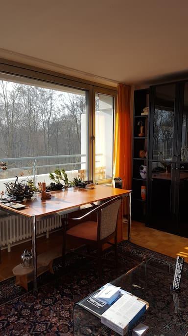 Wohnen und Arbeiten auf Zeit in ruhiger 1,5-Zimmer-Wohnung im Asemwald.