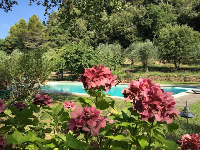 Hidden guest house with pool view - Cabris - Leilighet