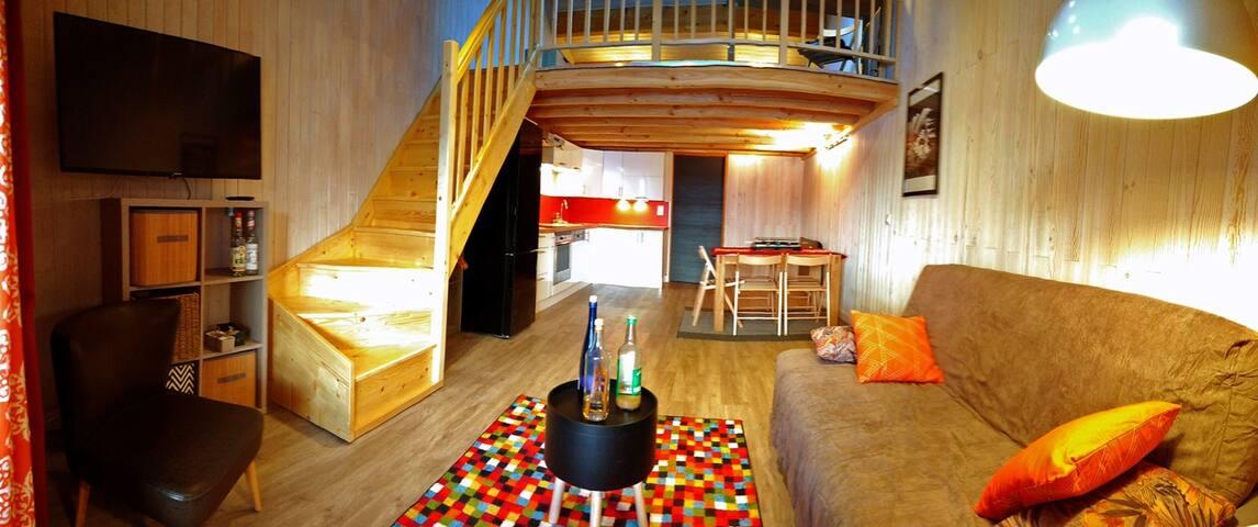 Duplex 52m²(38+14 in mezzanine)-Face ESF/slopes