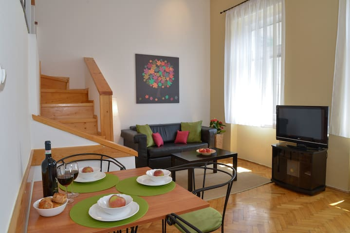 Peacefull appartment in the downtown - Budapest - Wohnung