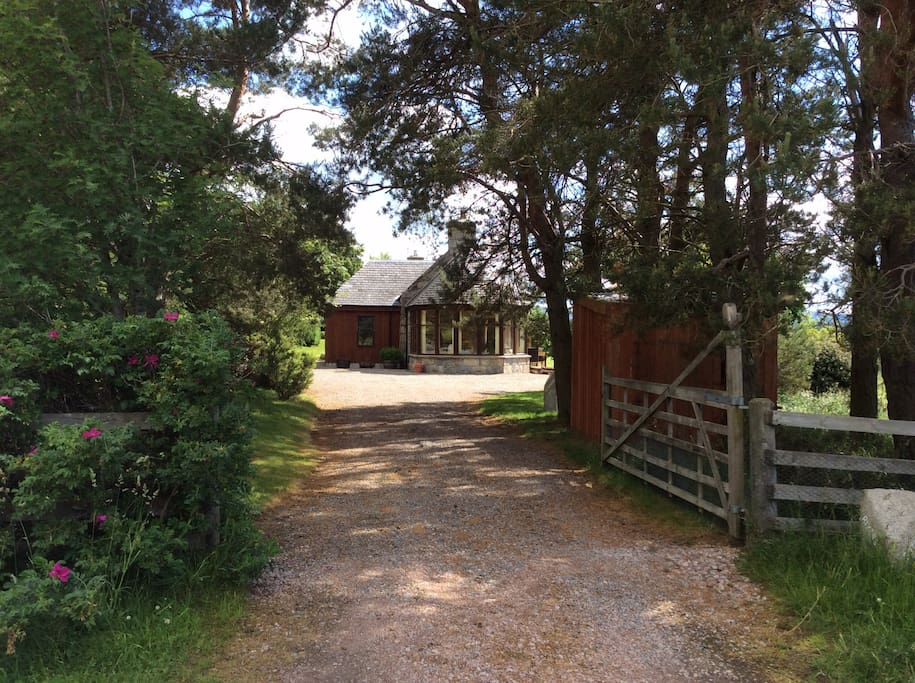 Private driveway and setting