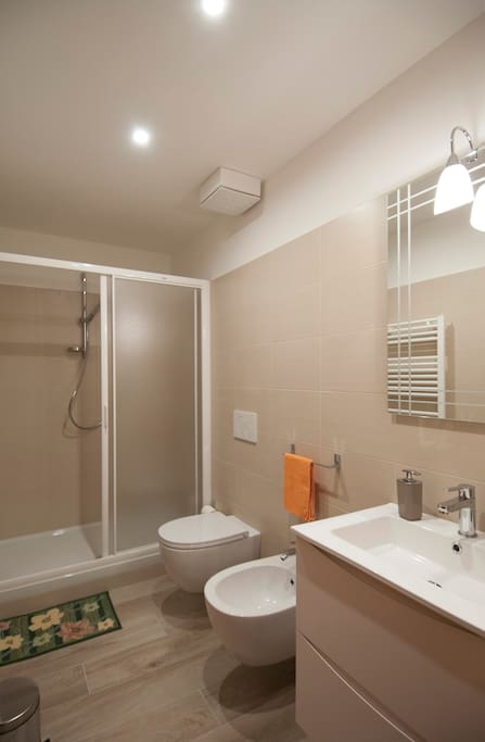 spacious  brand-new bathroom with shower