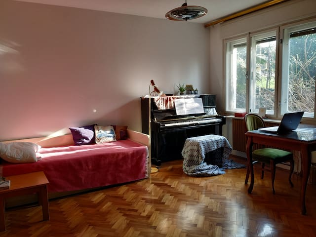 Cozy room in the center of Nova Gorica