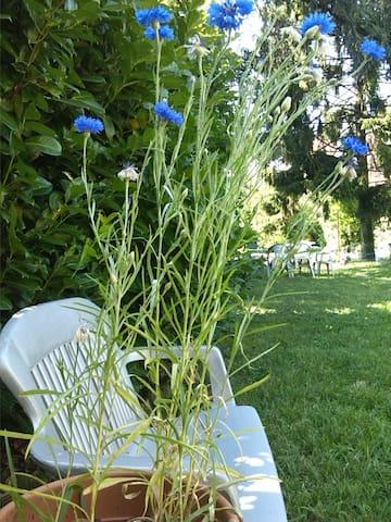 Milano posizione strategica villetta con giardino