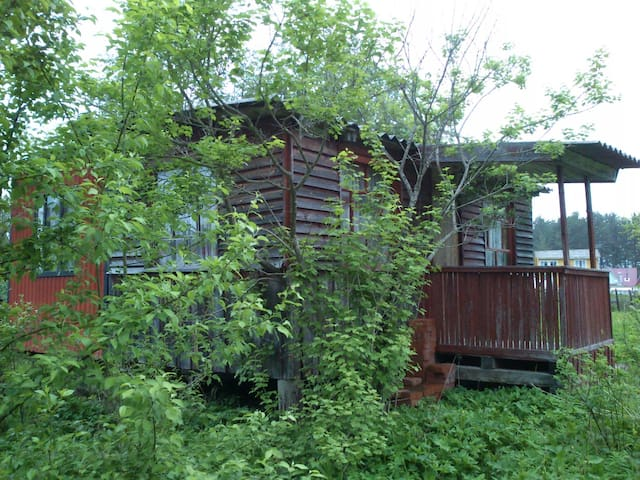 A little house in Luga area, Russia - Baranovo - Cabin