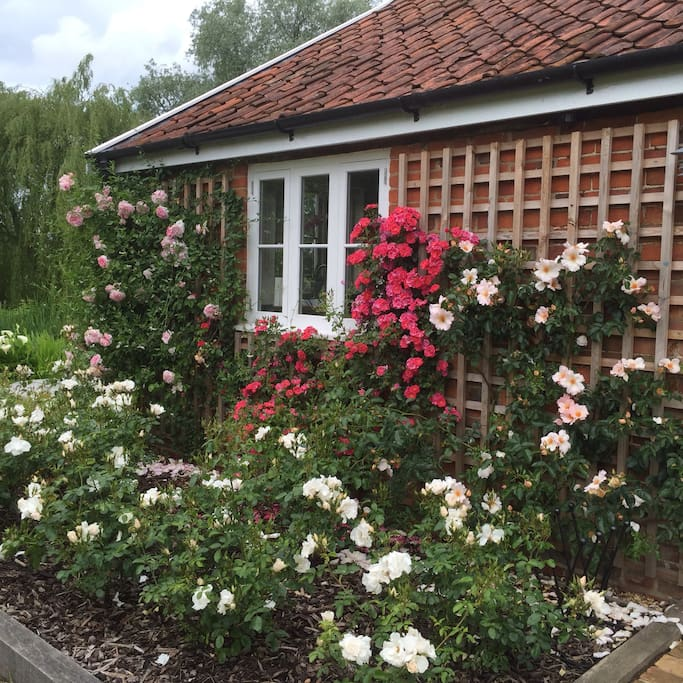 the rose garden planted immediately at the side of your front door giving a wonderful aroma throughout the year