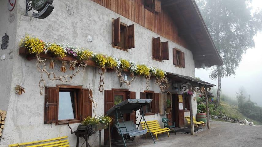 Rif. Alpenrose camera fino a 4 pax - San Lorenzo Dorsino - House