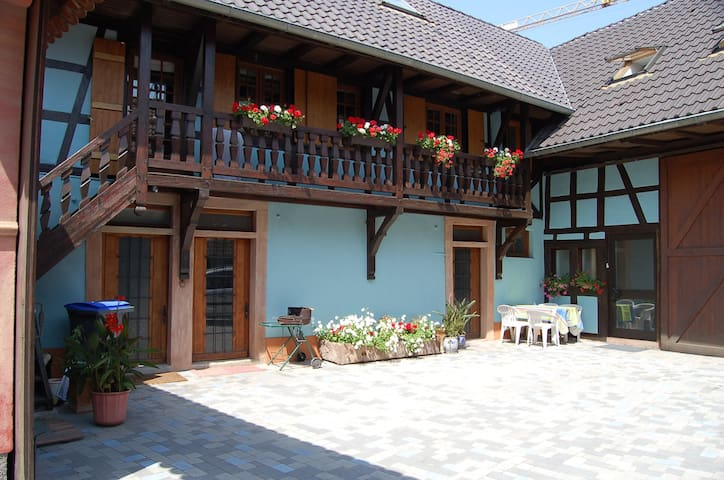 2 Nice apartments near Strasbourg ! - Mittelhausbergen - Appartement