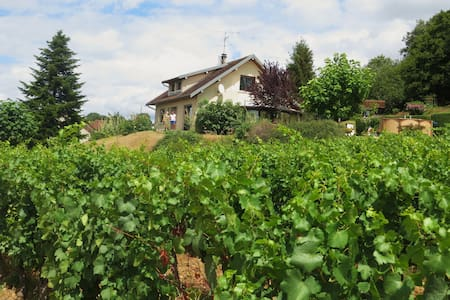 Maison dans la vigne (chambre 4p) - Voiteur - Huis