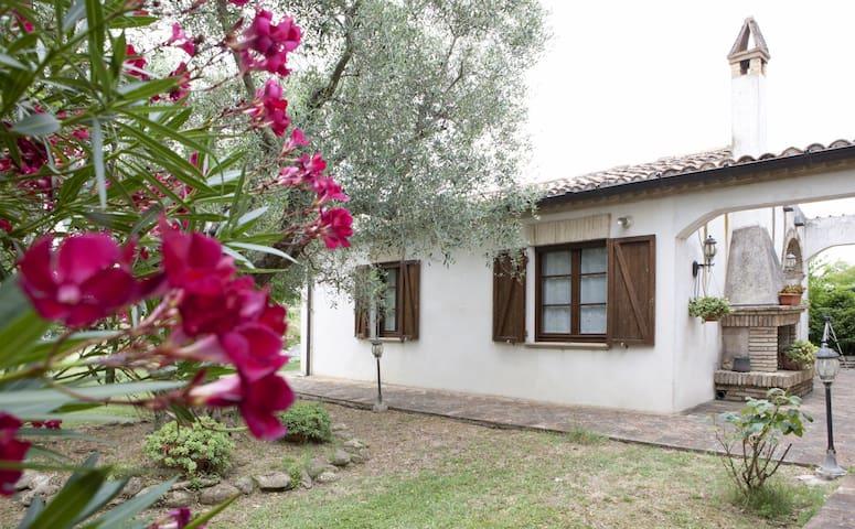 Appartamento Indipendente Mondavio - Mondavio