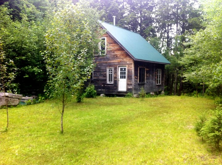 Green Wych Pine Cabin (offsite)