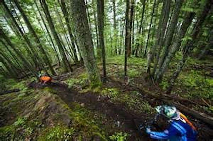 Mountain Biking all around!