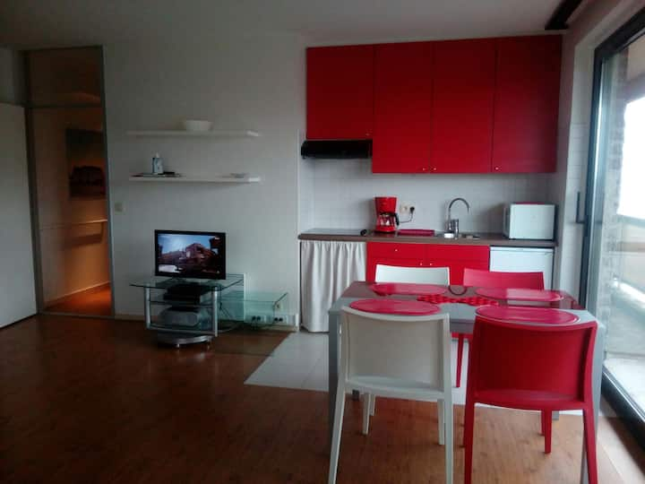 Appartement sea-side in De Panne 4p
