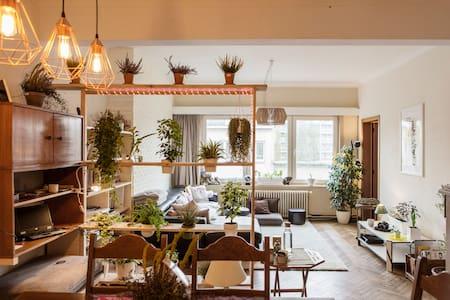 Relaxing homey stay in Antwerp - Anvers