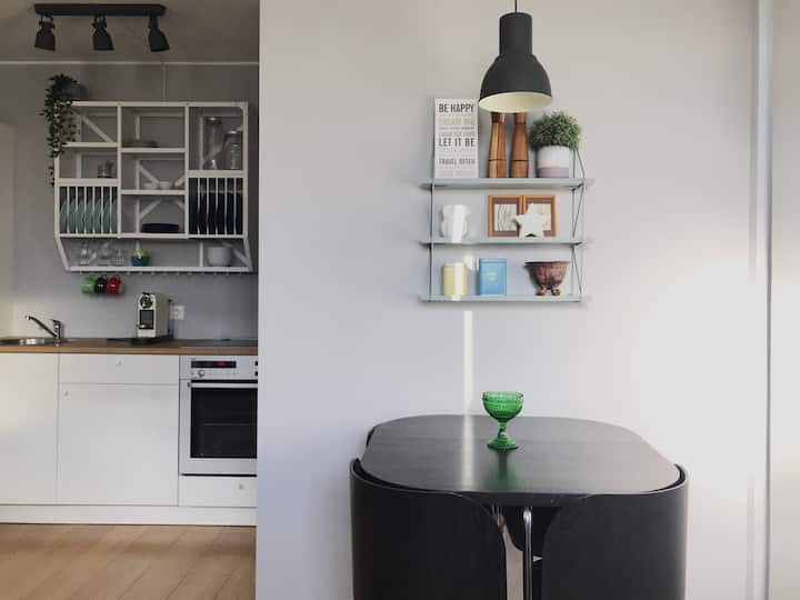 Cosy apartment close to downtown Reykjavik