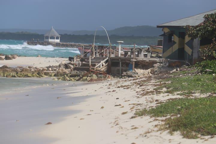 Palm Villa On The Beach