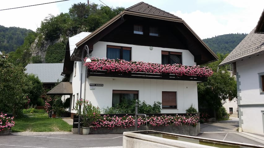 Apartment Suit Gregorc - near Bled - Bohinjska Bela