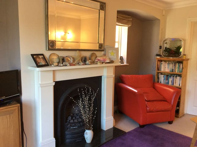 Double room close to centre for prof/FT students