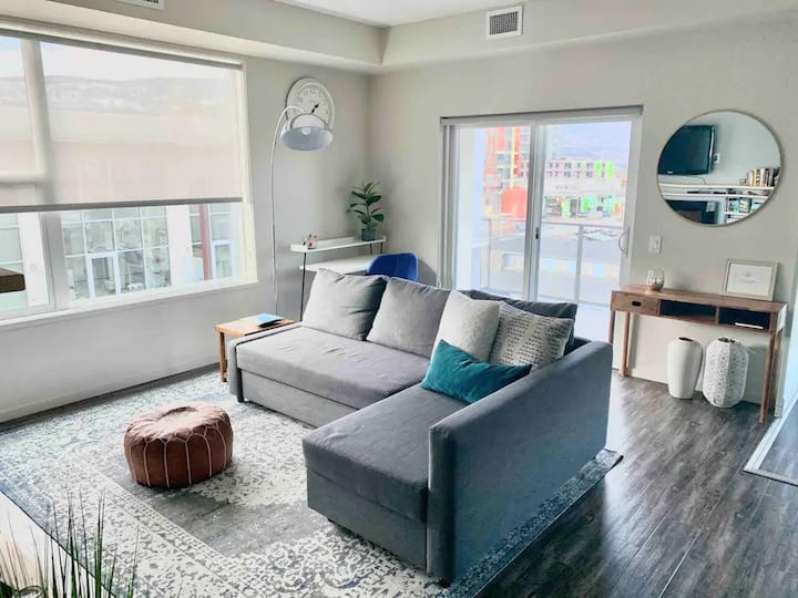 Downtown Luxury 2 bedroom (Professionally Cleaned)