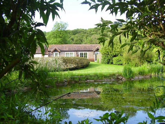Cottage view from the pond.