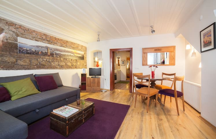 1 bedroom apartment in the center of Old Istanbul
