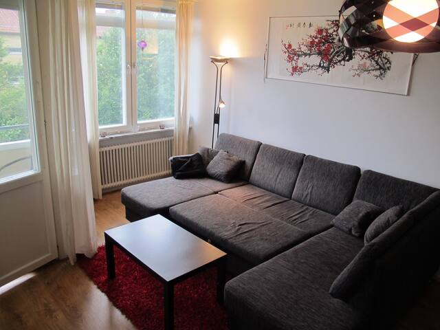 Big couch on quiet west side - Lund - Apartment