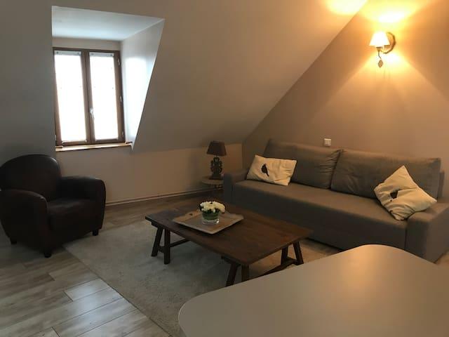 Bel appartement aux portes de la Côte des vins.
