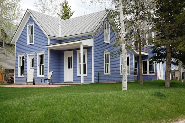 Aspen Monet Blue Contemporary Victorian