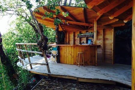 Cabane dans les cevennes - Saint-Roman-de-Codières - Sommerhus/hytte