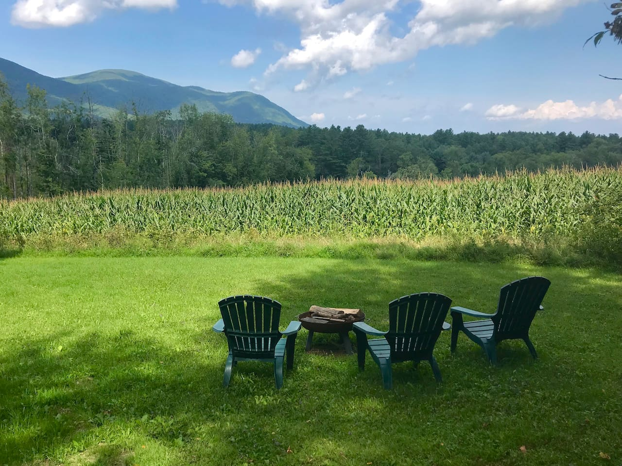 Late summer view from our fire pit